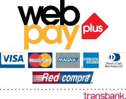Paga Seguro, paga online
